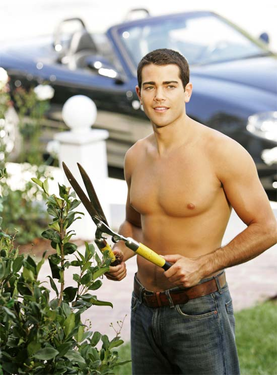Desperate Housewives Gay Actor Png